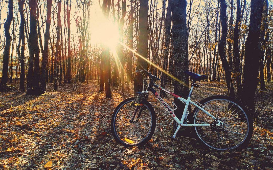 Consejos para elegir la talla de la bicicleta correcta